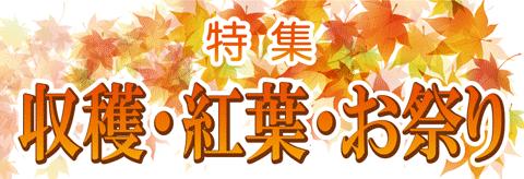 紅葉・秋の祭り特集