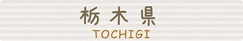 栃木ebooks